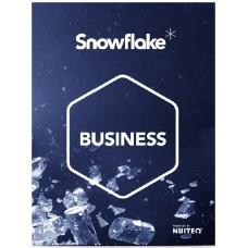 SnowFlake - Business Edition (мультитач программы для бизнеса)